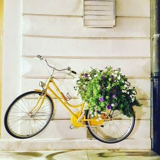 ❤ #piran 🇸🇰