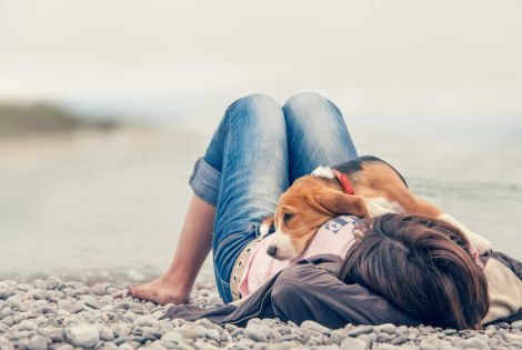 La tua vacanza pet friendly